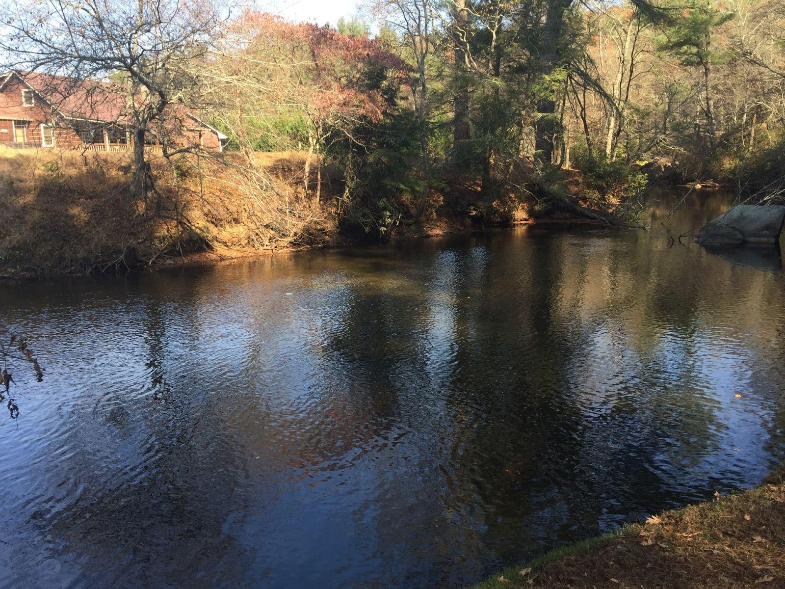 serene water in north Georgia